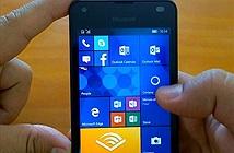 Nhiều smartphone Lumia sẽ nâng cấp lên Windows Mobile