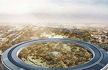 Gay cấn chuyện mua 9.000 cây phủ xanh Apple Park