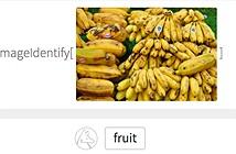 Website có khả năng nhận diện mọi đối tượng trong ảnh