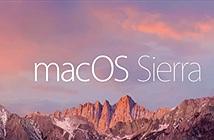 Apple đổi tên OS X thành macOS, bản Sierra có Siri, copy giữa máy iOS, Apple Pay, PiP....