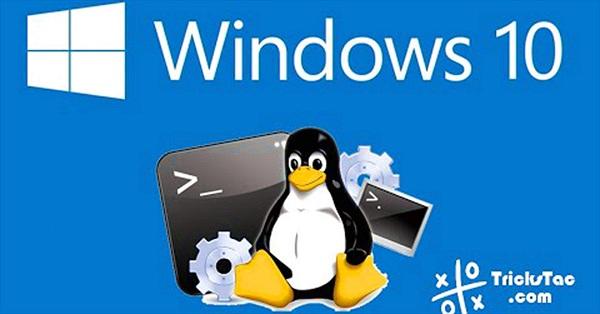 Sử dụng Zsh (hoặc các Shell khác) trên Windows 10 như thế nào?