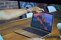 Apple ra mắt macOS Sierra: Tự động đăng nhập, thêm Siri