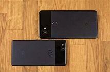 Pixel 2 gặp lỗi phần mềm camera, Google đang tìm cách sửa
