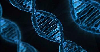 8 phát kiến khoa học chứng minh thuyết tiến hóa là chuẩn xác