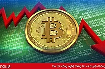 Bitcoin chọc thủng đáy 6.000 USD, nhấn chìm mọi đồng tiền mật mã khác