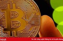 Giá Bitcoin hôm nay 14/8: Nhà đầu tư đang bớt ảo tưởng về giá trị tiền ảo