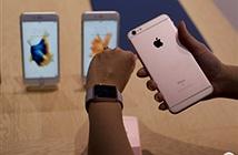Apple: iPhone 6s sẽ phá kỷ lục doanh số của iPhone 6