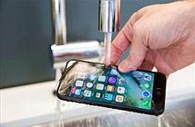 Apple gây sốc khi lượng đặt mua iPhone 7 gấp 4 lần iPhone 6