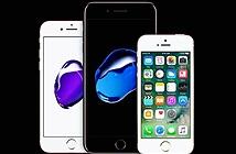 Apple tăng phí sửa chữa màn hình iPhone