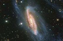 Ảnh chụp thiên hà xoắn ốc cách 65 triệu năm ánh sáng