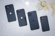 Có thể đặt gạch iPhone 12 từ 16/9?