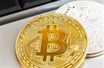 Bitcoin Gold không thành công như kỳ vọng