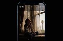 iOS 14.3 beta: theo dõi thai kỳ, chụp ProRAW trên iPhone 12 Pro, tay cầm PS5