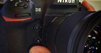 Nikon D5 và những hình ảnh đầu tiên: 153 điểm Auto Focus, ISO 102.400