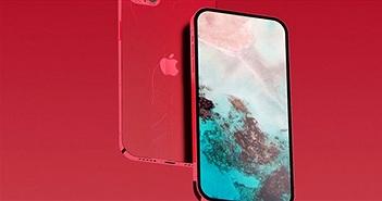 """CEO Apple nói iPhone vẫn chưa trưởng thành, """"úp mở"""" về iPhone 12"""