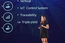 Xây dựng hệ thống IoT để nuôi dế, startup này đại diện Việt Nam thi đấu ở Canada