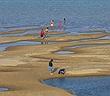 Sông Mê Kông chuyển từ màu phù sa sang màu xanh biếc