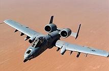 Lầu Năm Góc ngừng sử dụng A-10, tiếp tục đóng cửa căn cứ