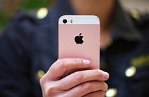 Thông tin mới vụ người dùng iPhone Việt Nam khởi kiện hãng Apple