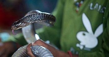 """Bị rắn """"thần"""" cắn, người đàn ông trở nên khác thường"""