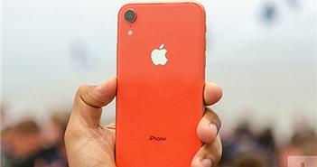 Các nhà bán lẻ ngừng bán iPhone XR tại Việt Nam vì ế ẩm