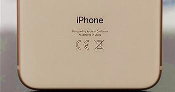 Hé lộ iPhone 5,4 inch sẽ ra mắt năm nay
