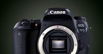 Canon ra liền 3 máy ảnh EOS 800D, 77D và M6