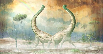 Loài khủng long mới được phát hiện có đuôi hình trái tim