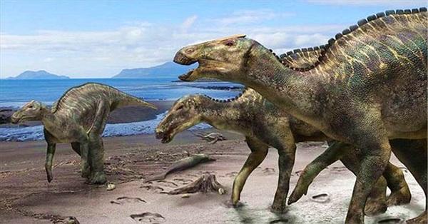 Phát hiện dấu tích bệnh ung thư hiếm gặp trong hóa thạch khủng long