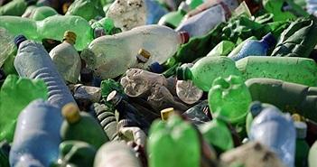 Phát hiện vi khuẩn 'ăn' rác thải nhựa
