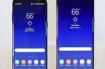 Xuất hiện ảnh Galaxy S9+ Mini giống hệt iPhone X
