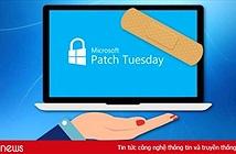 Microsoft vá 113 lỗi bảo mật Windows và các sản phẩm khác