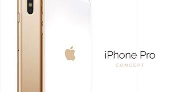 Ngây ngất trước iPhone Pro dùng cảm biến Touch ID trên màn hình
