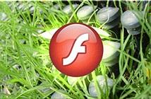 Google và Mozilla dừng hỗ trợ Flash phiên bản cũ