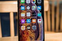 """""""Tai thỏ"""" đã hết thời, Apple phải """"lột xác"""" cho iPhone"""