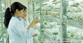 Quy hoạch mạng lưới tổ chức KH&CN công lập cấp tỉnh: Các tỉnh khảo sát và đề xuấT