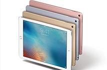 iPad Pro 10,5 inch ra mắt vào năm 2017