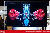 LG ra mắt TV mỏng nhất Việt Nam, có thể dán lên tường, giá từ 300 triệu đồng