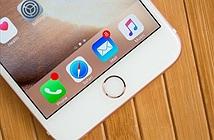 Apple dự kiến bán được 100 triệu iPhone 7 trong năm nay