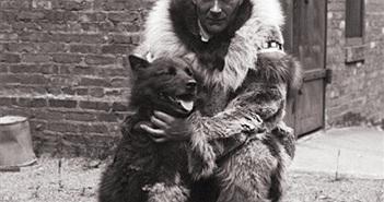 Ly kỳ 150 chú chó husky cứu làng 10.000 người khỏi bệnh bạch hầu
