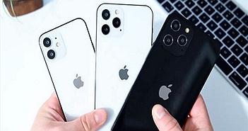 Người dùng sẽ chọn mua mẫu iPhone 12 nào?