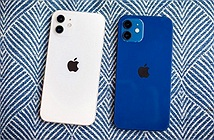 iPhone nào giảm giá sau khi iPhone 13 ra mắt?