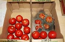 Những chất bảo quản thực phẩm kịch độc