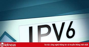 4,3 triệu người sử dụng Internet ở Việt Nam được kết nối qua IPv6