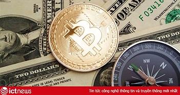 Giá Bitcoin hôm nay 15/11: Thị trường tiền mật mã lao dốc, Bitcoin giảm 1.000 USD