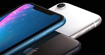"""iPhone XR """"ế hàng"""": nguyên nhân do đâu?"""