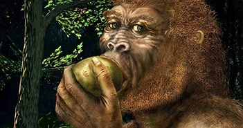 Tiến hóa giúp con người uống được rượu