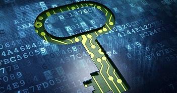 Cục An toàn thông tin hỗ trợ giám sát gần 4.000 website tên miền .gov.vn