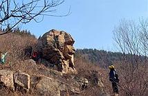 Kỳ bí mỏm đá tự nhiên giống hệt tượng nhân sư, vượn đá
