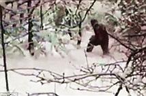 Bất ngờ bắt gặp người tuyết Yeti tại Nga